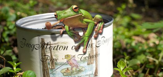 Frog Morton on the Bayou